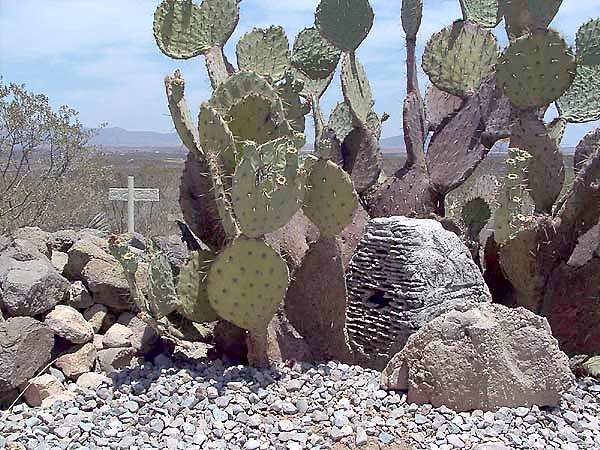 Boothill Graveyard, Tombstone, Arizona - Burial Records