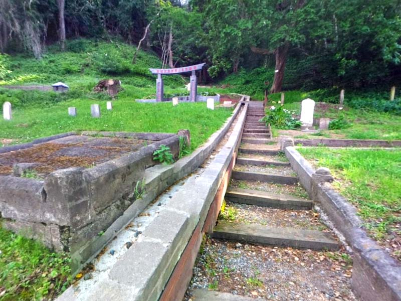 a history of the evergreen cemetery in santa cruz california Laura mayan attached a crinkle hose to a nearby faucet and dragged it over to  the dirt-covered plot at evergreen cemetery where her.