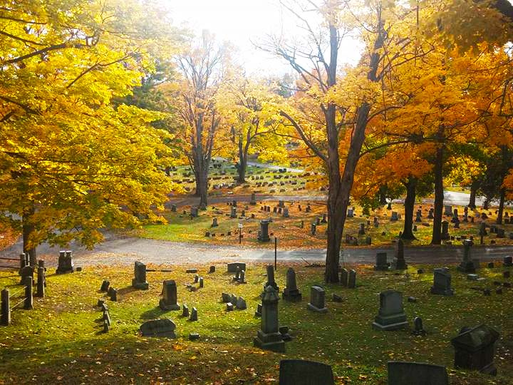 fort hill cemetery auburn new york burial records. Black Bedroom Furniture Sets. Home Design Ideas