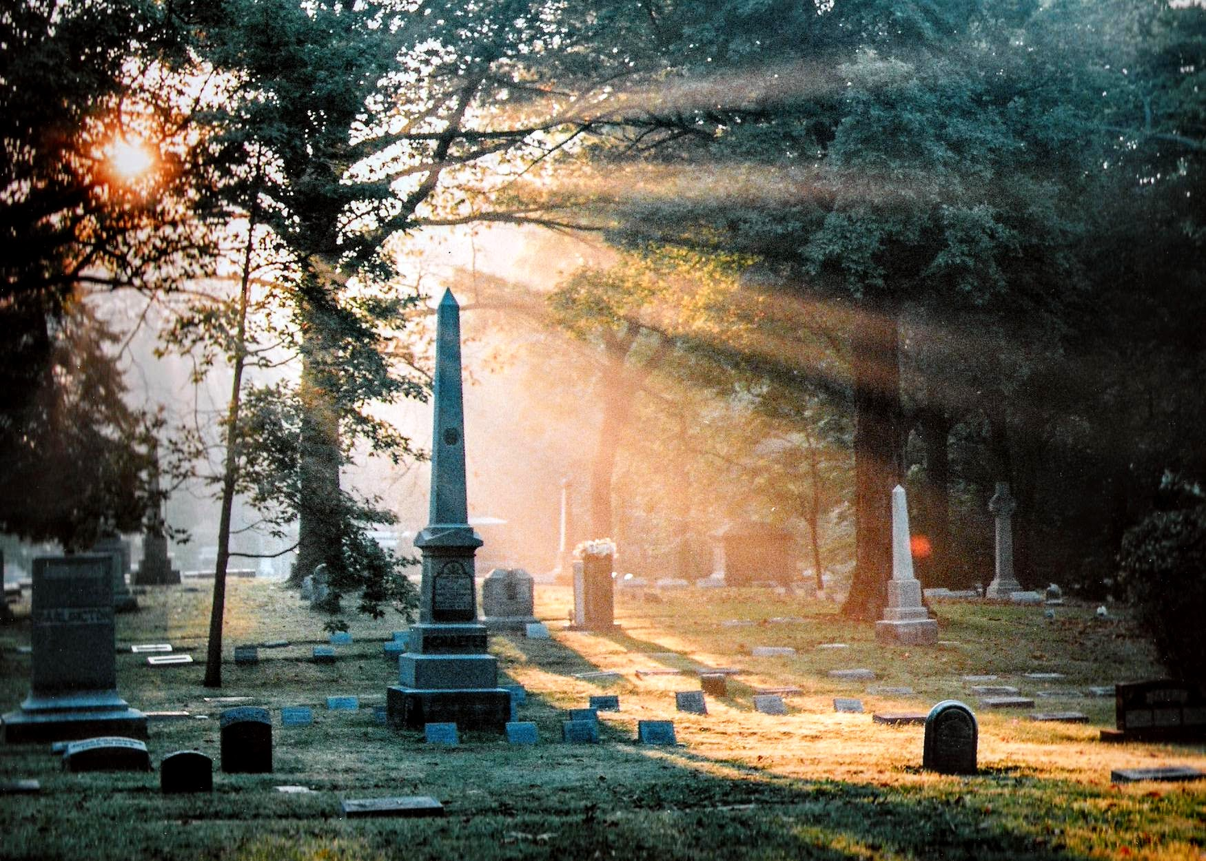sun shining through cemetary