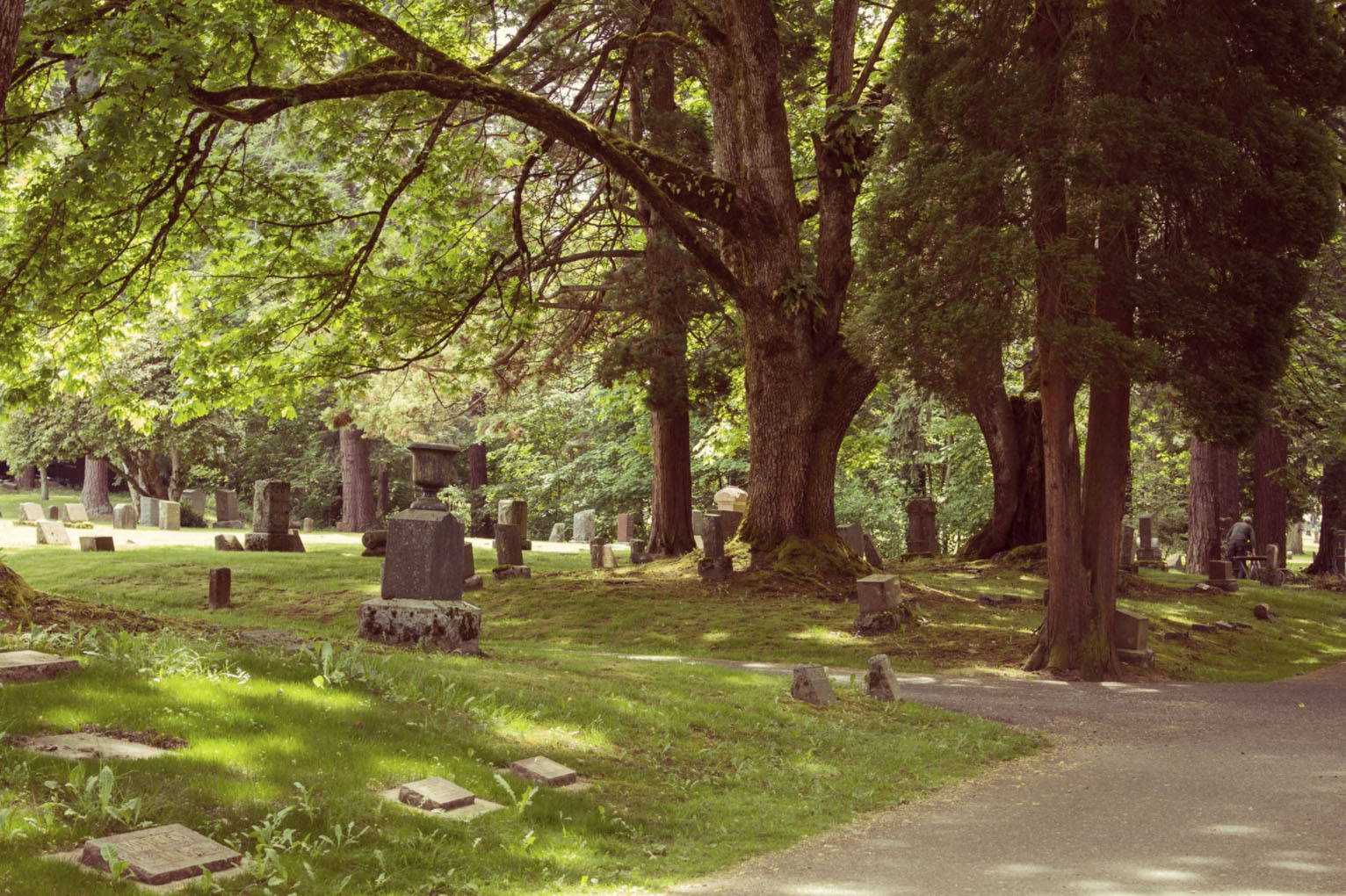 Bayview Cemetery Bellingham Washington Surnames H