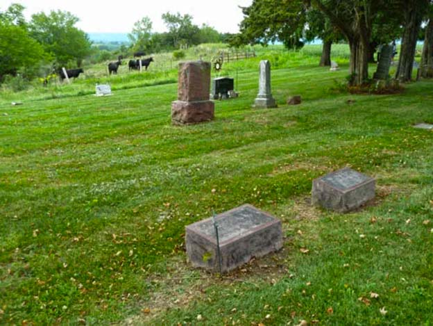 Garden Bluff Cemetery, Lodi, WIsconsin - Burial Records